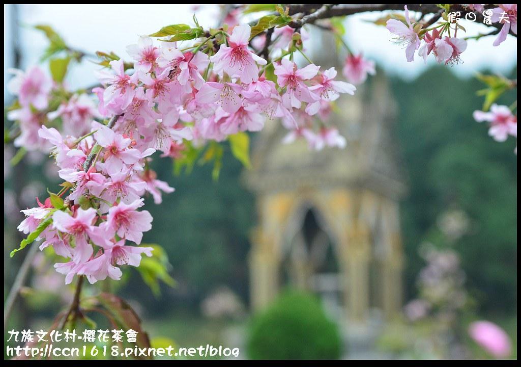 九族文化村-櫻花茶會DSC_4677