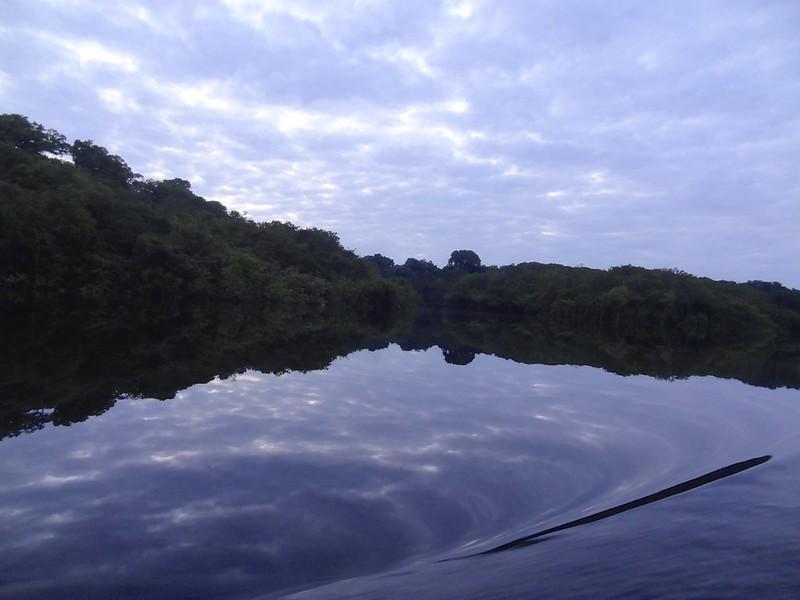 manaus-rio negro-amazon 46