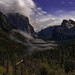Valley Movement, Yosemite by Matt Granz Photography