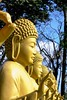 Brazil FozDoIguaçu Taking Photos Buddhism Buddhist Temple Peace And Quiet What Does Peace Look Like To You?
