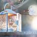 Magic Lantern by akaadventurephotos