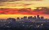 Flaming Phoenix Sky