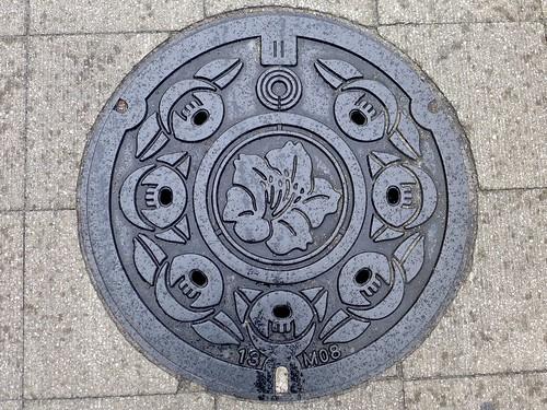 Kawasaki Kanagawa, manhole cover (神奈川県川崎市のマンホール)