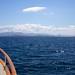 Summer yachting