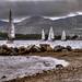 Sailing I...