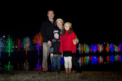 Family and Festive Trees