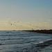 Lydd on Sea