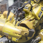 GBWC2014_World_representative_exhibitions-19
