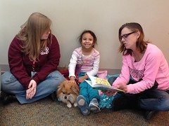 Paws to Read January 10, 2016 Calvert Library Prince Frederick, therapy dog, child, paws to read