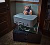 Ready to go (Happy Teddy Bear Tuesday)