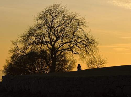 winter light sunset shadow sky woman sun cold tree nature oslo norway wall female canon dark eos evening norge heaven norwegen silouette 7d bygdøy silouettes natureshot naturepic