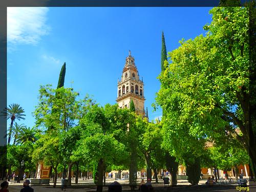 Torre de la Mezquita Catedral desde el Patio de los Naranjos