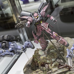 GBWC2014_World_representative_exhibitions-229