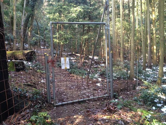清滝山 獣避けゲート