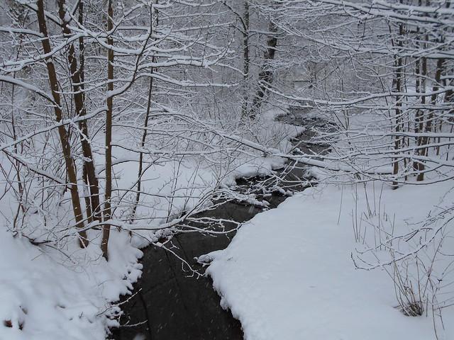 Luminen maisema nimettömällä viheralueella Hämeenlinnassa 2.2.2015