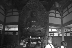 Oahu - Byodo-In Temple Buddha