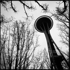 Street Photography: Seattle, March 5, 2015