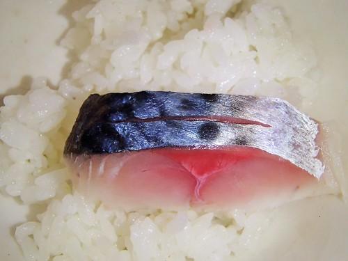 生魚片 - naniyuutorimannen - 您说什么!
