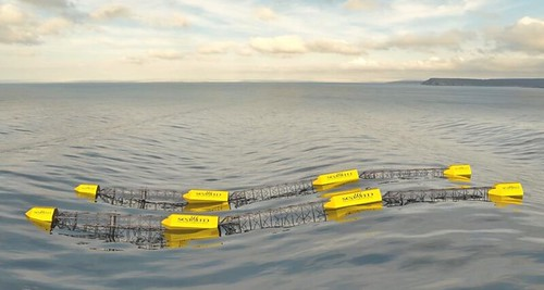 Grey Island Energy Inc.'s SeaWEED wave power system.