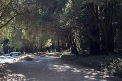 Porter Picnic Area Trailhead