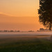 Foggy morning by BraCom (Bram)