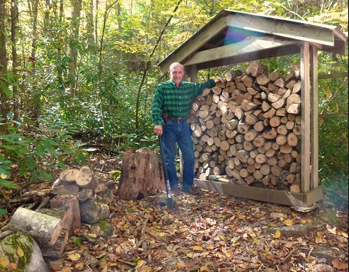 Time to fill the wood pile