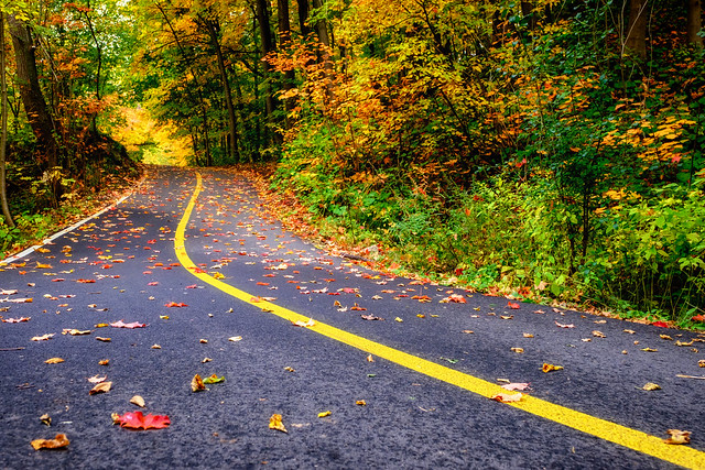 Autumn road III