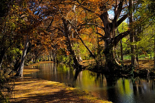 autumn colors leaves creek reflections landscape texas cypress wimberley waterscape