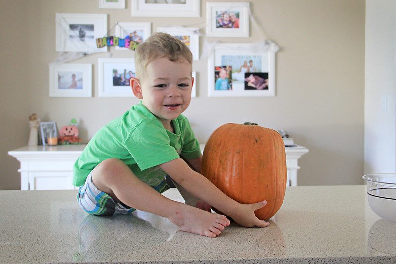 28 October 2014- Pumpkin Carvin'001
