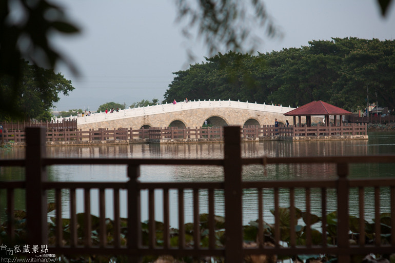 台南私藏景點-新營天鵝湖 (7)