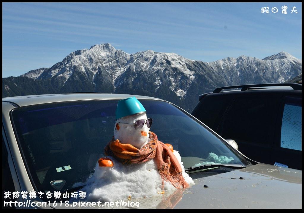 武陵賞櫻之合歡山玩雪DSC_5307