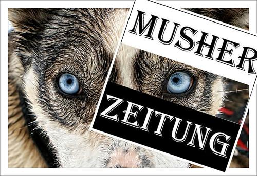 IFSS Schlittenhunde Weltmeisterschaft 2015, Todtmoos: