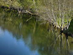 Paseo por el río Lérez