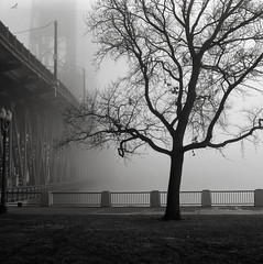 Along the Willamette River, Portland