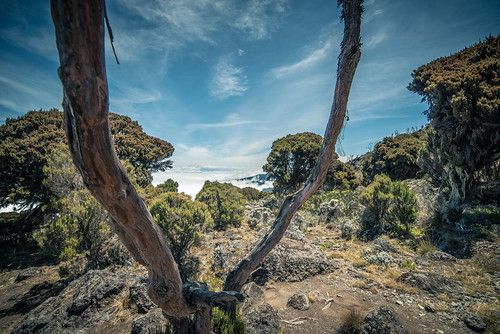 africa tanzania 2014 kilimanjarotrek digdeep abhimanyubose boseography