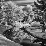 Swiss Garden_3