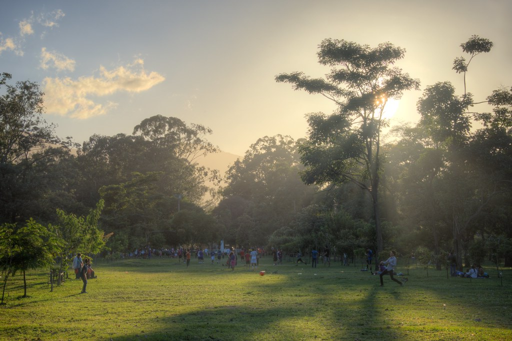 Kids Play in La Sabana Metropolitan Park