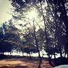 Sepetang di sisir pantai #Labuan #Malaysia #picoftheday
