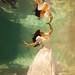 The Dress Phone Wallpaper Underwater Trash