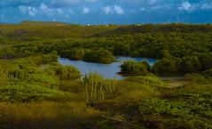 Aruba Balashi  lake
