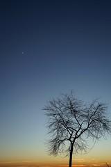 Beautiful winter evening