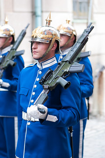 Guard with automatic rifle
