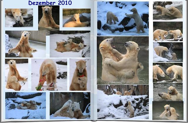 2010_12 Eisbär Knut