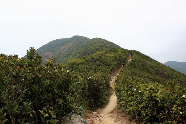 Hong Kong Hikes: The Twins