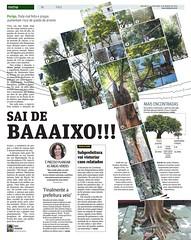 Árvores caindo - Metro SP / 2015