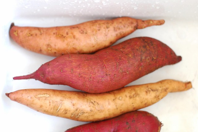 Sweet potatoes from our garden by Eve Fox, The Garden of Eating, copyright 2015
