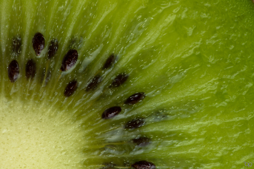 Kiwi Mm Fill The Frame With Food Explored Thank You
