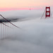 Magical morning fog by davidyuweb