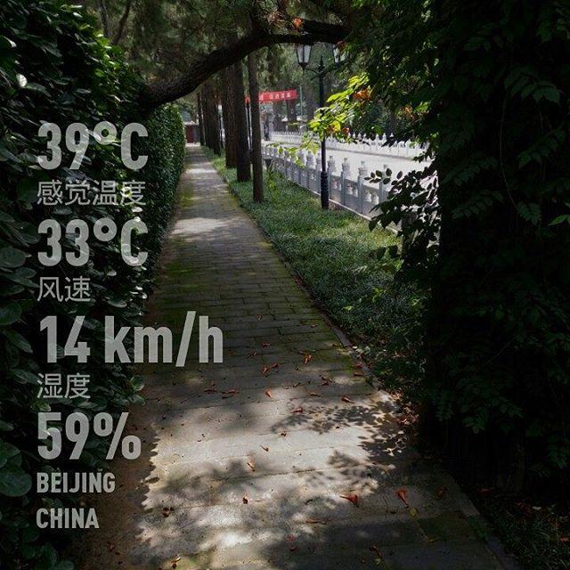 #weatherandgrowing