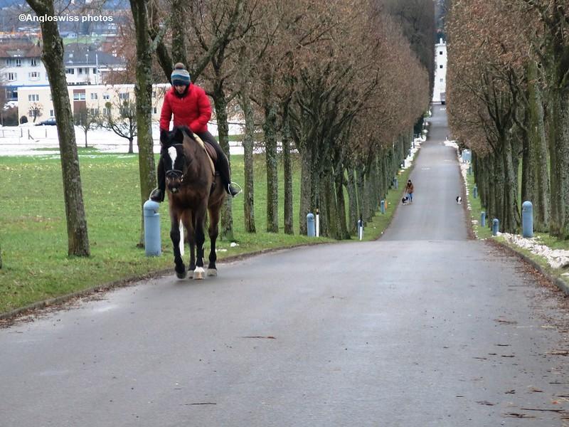 Horseride path castle Waldegg
